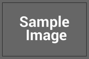 img-sample